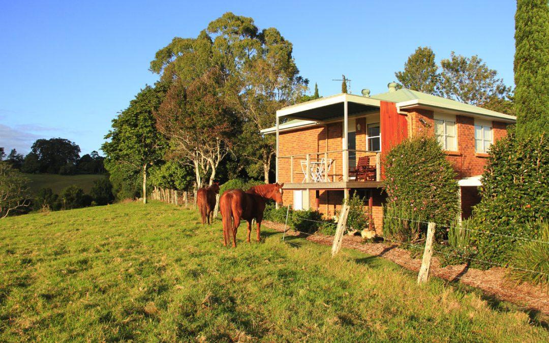 maleny accommodation, maleny bnb, maleny bed and breakfast, seasons of maleny b and b, seasons of maleny bed and breakfast